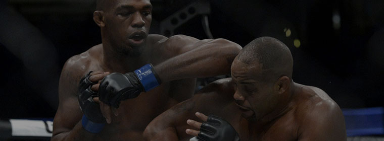MMA & Kickboxing gloves