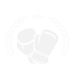 Everlast Hi Top Boxing Shoes