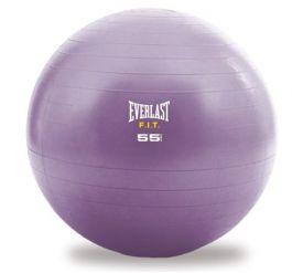 Everlast Stability Ball 55cm