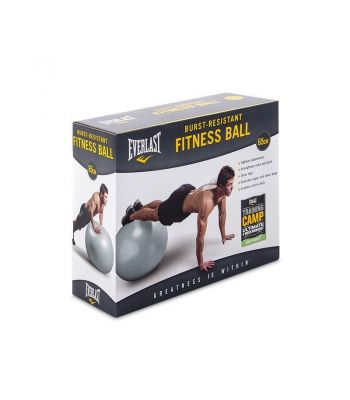 Everlast Anti-burst Inflatable Balls 65cm