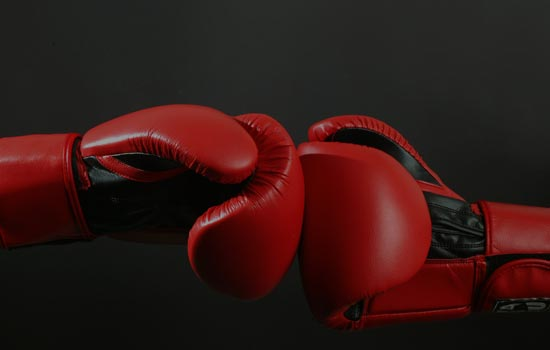 Some Regular Features of Boxing Gloves