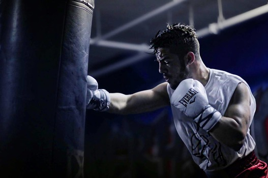 How You Can Improve Your Punching Power