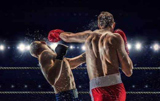 8 Basics Tips To Help You Succeed As an MMA Fighter